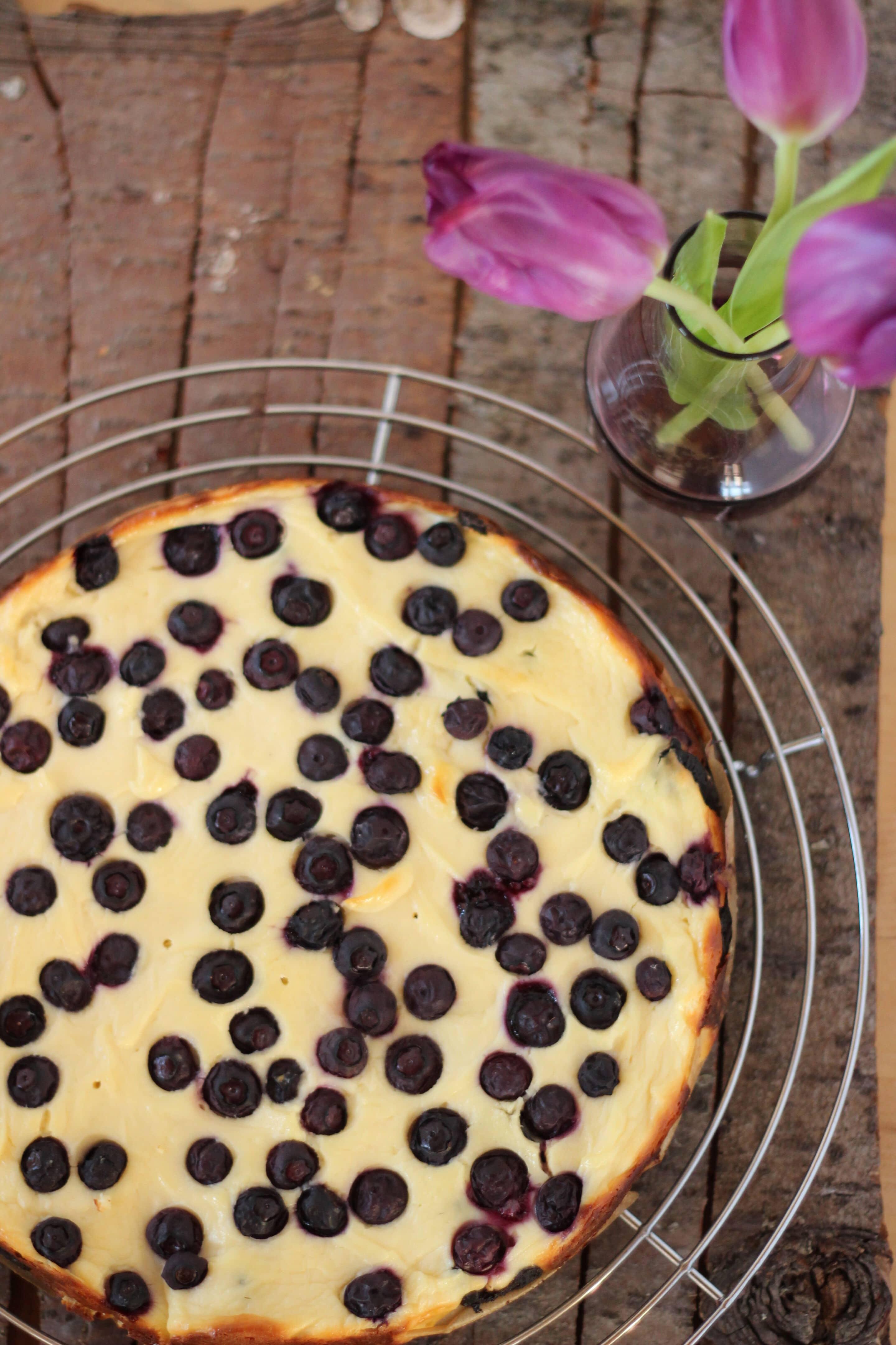 Oreo-Cheesecake mit Blaubeeren für die Königin oder was Bryan Adams zum Dessert isst
